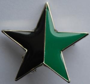 Anstecker / Pin: schwarz/grüner Stern