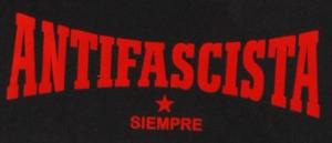 Detailansicht Kapuzen-Pullover: Antifascista siempre