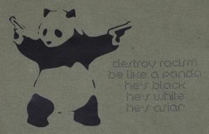 Detailansicht Kapuzen-Pullover: destroy racism - be like a panda