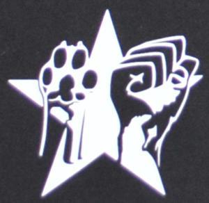 Detailansicht Shorts: Faust und Pfote - Stern