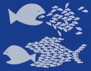 Detailansicht Girlie-Shirt: Fische (blau)