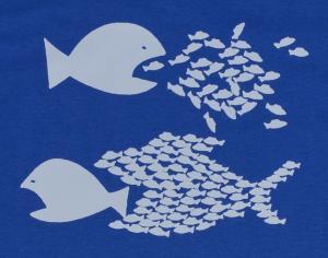 Detailansicht T-Shirt: Fische (blau)