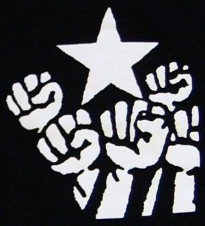 Detailansicht Girlie-Shirt: Fist and Star