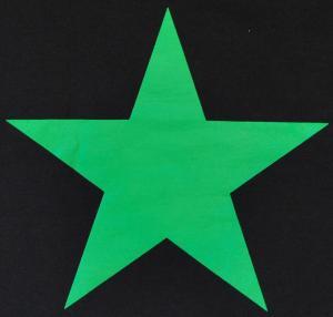 Detailansicht Girlie-Shirt: Grüner Stern