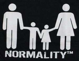 Detailansicht Girlie-Shirt: normality