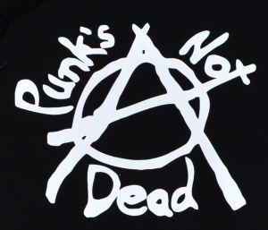 Detailansicht Kapuzen-Pullover: Punks not Dead (Anarchy)