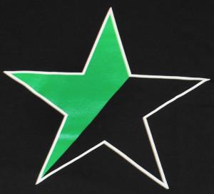 Detailansicht T-Shirt: Schwarz/grüner Stern
