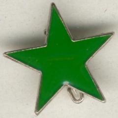 """Zum Anstecker / Pin """"grüner Stern"""" für 3,00 € gehen."""