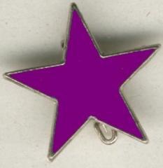 """Zum Anstecker / Pin """"lila Stern"""" für 3,00 € gehen."""