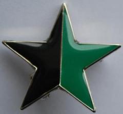 """Zum Anstecker / Pin """"schwarz/grüner Stern"""" für 3,00 € gehen."""