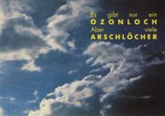 """Zur Postkarte """"Es gibt nur ein Ozonloch. Aber viele Arschlöcher."""" für 1,00 € gehen."""