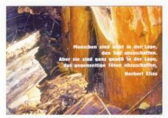 """Zur Postkarte """"Menschen sind nicht in der Lage, den Tod abzuschaffen. Aber sie sind ganz gewiß in der Lage, das gegenseitige Töten abzuschaffen. (Norbert Elias)"""" für 1,00 € gehen."""